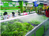 德诚信果蔬保鲜加湿器 超市果蔬加湿喷雾机
