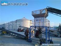 佳木斯加工设备电子水稻包装秤